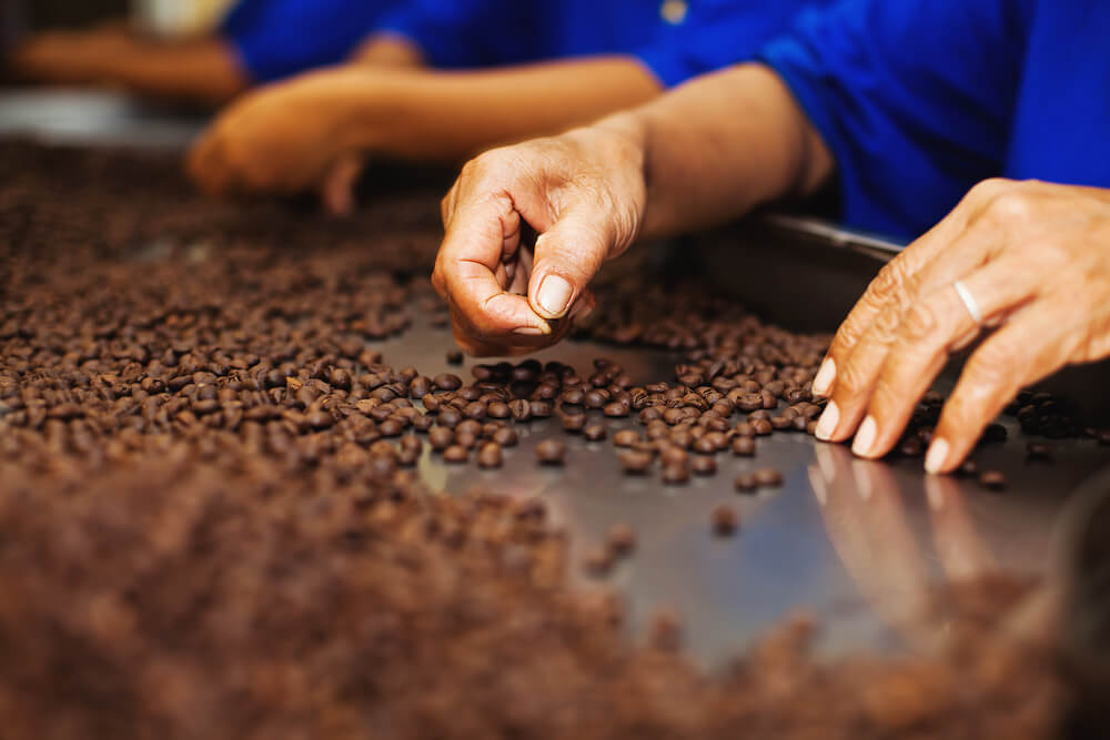 Fábrica de Chocolate Garoto – Vila Velha